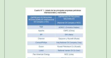 MATRIZ ENERGÉTICA PRIVATIZACIÓN